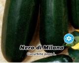 Tykev cuketa Nero di Milano