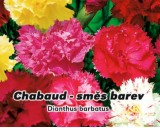 Hvozdník karafiát - Chabaud - Směs barev - semena hvozdíku 0,5g