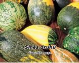 Okrasné tykvičky - semena tykviček 3 g