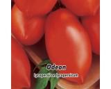 Rajče keříčkové - Odeon - semena rajčete 0,2g