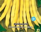 Fazol zahradní tyčkový - Goldmarie - Semena - 15 g
