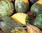 Okrasné tykvičky směs odrůd