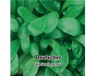 Kozlíček polní - Deutscher - semena kozlíčku 1g